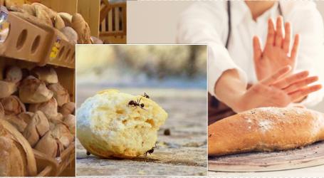 Alarmi i ekspertit: Çfarë buke hanë banorët e Tiranës?! Nuk myket, as milingonat nuk e mbledhin… Askush nuk e kontrollon