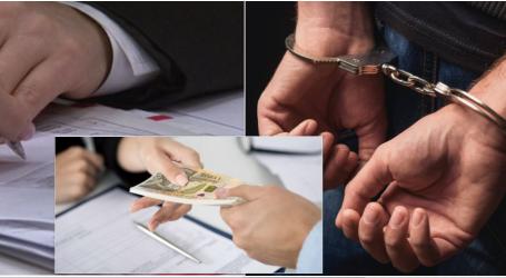 """Konfirmohet investigimi i """"Priza.al""""/ Policia prangos në Tiranë dy të rinj. Merrnin kredi me dokumente të falsifikuara, rekrutonin edhe të tjerë…"""